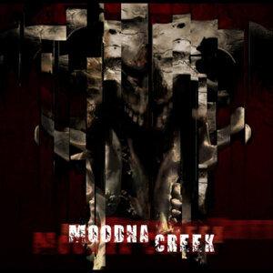 Moodna Creek Foto artis