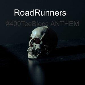 Roadrunners Foto artis