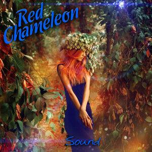 Red Chameleon Foto artis