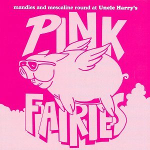 Pink Fairies Foto artis