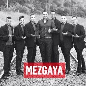 Mezgaya Foto artis