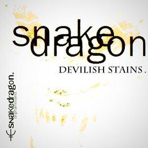 Snakedragon Foto artis