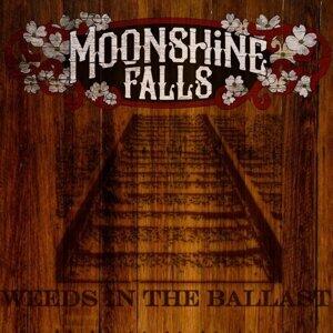 Moonshine Falls Foto artis