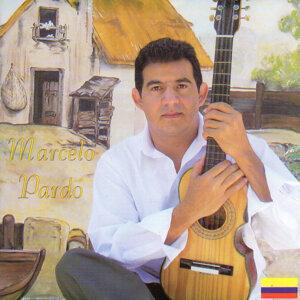 Marcelo Pardo Foto artis