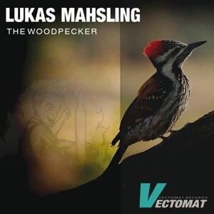 Lukas Mahsling Foto artis