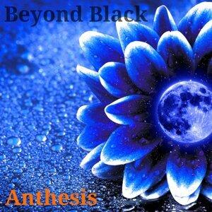 Beyond Black Foto artis