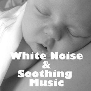 Institute for Baby Sleep Foto artis
