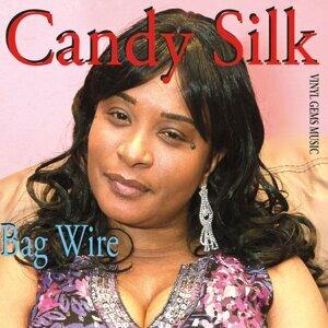 Candy Silk Foto artis