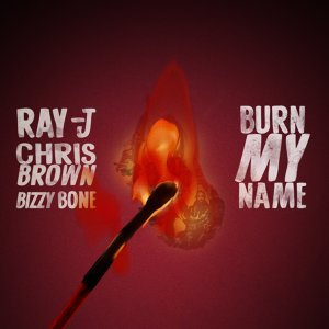 Ray J, Chris Brown Artist photo