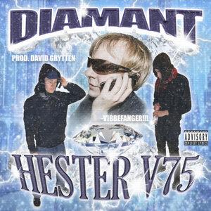 Hester V75 Foto artis