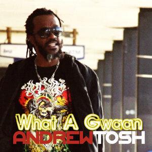 Andrew Tosh 歌手頭像