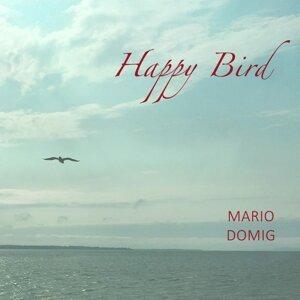 Mario Domig Foto artis
