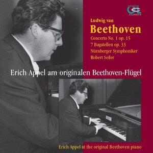 Nürnberger Symphoniker / Robert Seiler / Erich Appel Foto artis