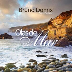 Bruno Domix Foto artis