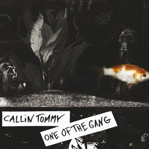 Callin Tommy Foto artis