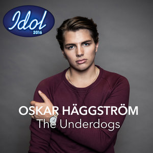 Oskar Häggström Foto artis