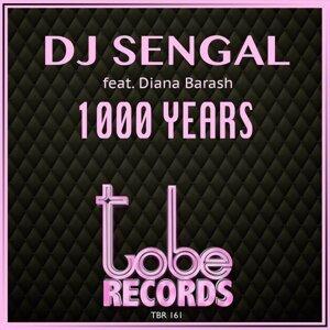 DJ Sengal feat. Diana Barash Foto artis