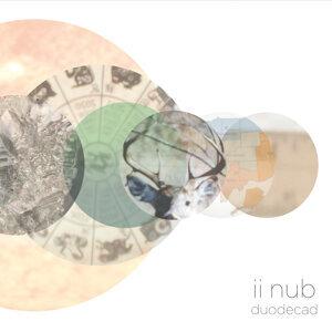 II Nub Foto artis