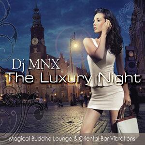 DJ MNX 歌手頭像