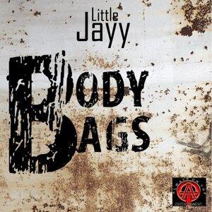 Little Jayy Foto artis