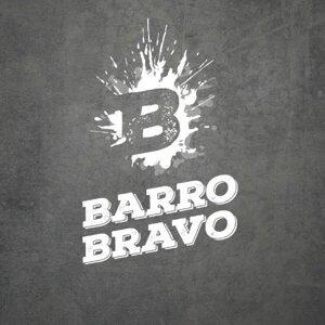 Barro Bravo Foto artis
