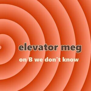 Elevator Meg Foto artis