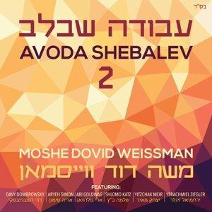 Moshe Dovid Weissman Foto artis
