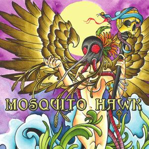 Mosquito Hawk Foto artis