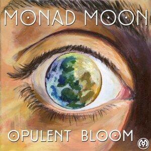 Monad Moon Foto artis