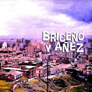 Alcides Briceño, Jorge Añez Foto artis
