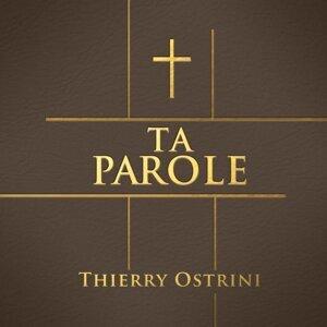 Thierry Ostrini Foto artis