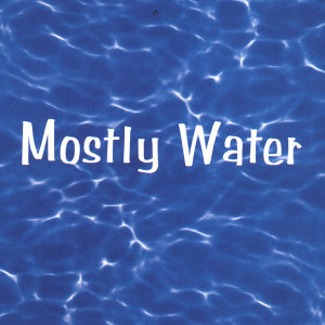 Mostly Water Foto artis