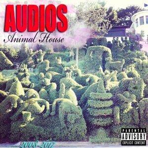 Audios Foto artis