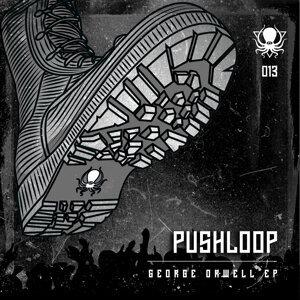 Pushloop Foto artis