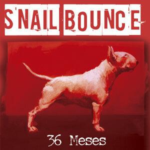 Snail Bounce Foto artis