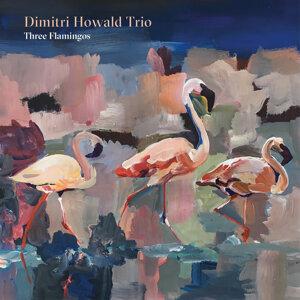 Dimitri Howald Trio Foto artis