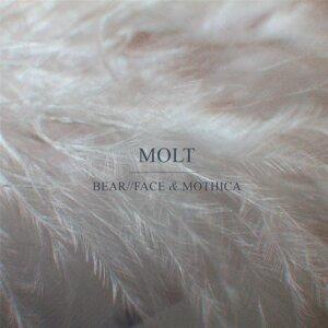 Mothica, Bear//Face Foto artis