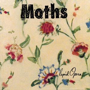 Moths Foto artis