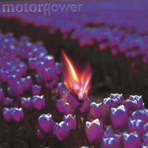 Motorflower Foto artis