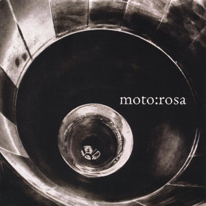 Moto:Rosa Foto artis