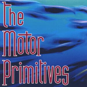 The Motor Primitives Foto artis