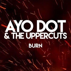 Ayo Dot & the Uppercuts Foto artis