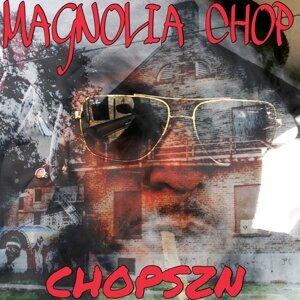 Magnolia  Chop Foto artis
