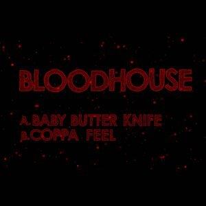 Bloodhouse Foto artis