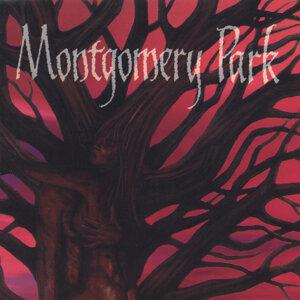 Montgomery Park Foto artis