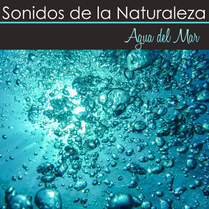 Sonidos Naturales Relax 歌手頭像