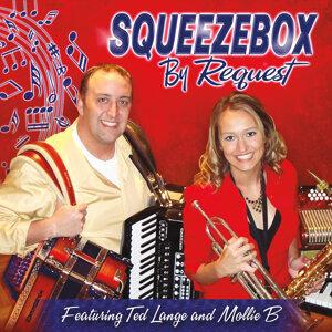 Squeezebox Foto artis