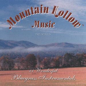 Mountain Hollow Music Foto artis