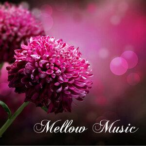 Mellow Music Master 歌手頭像