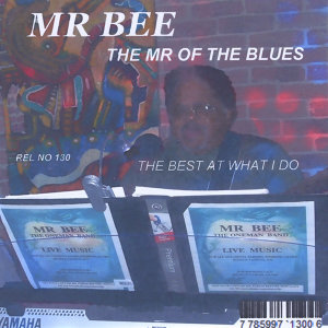 Mr Bee Foto artis